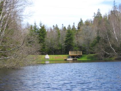 Forest & Stream Cottages