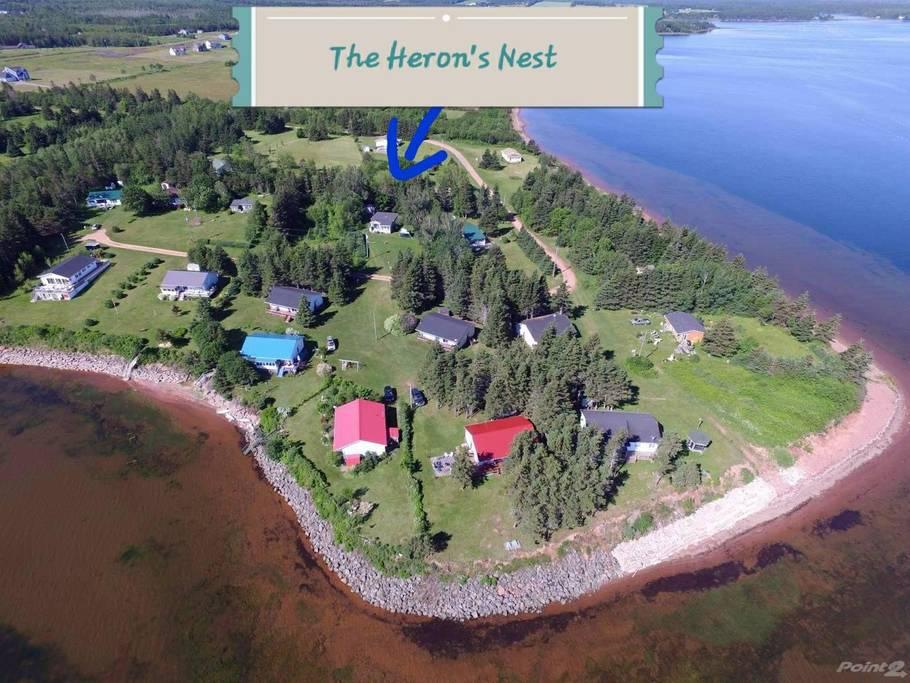 The Heron's Nest