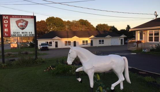 White Horse Motel Inc