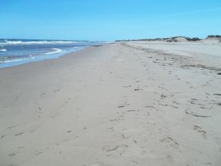 Sandcastles Beach House - Meadowside